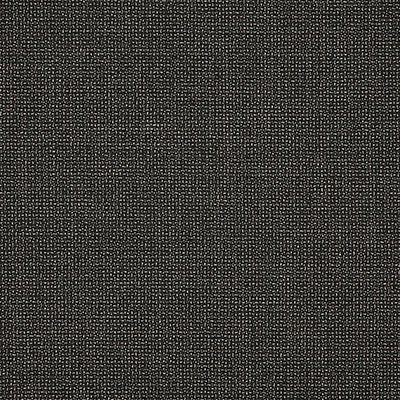 Sunbrella Bliss Onyx 48135-0004 Fabric