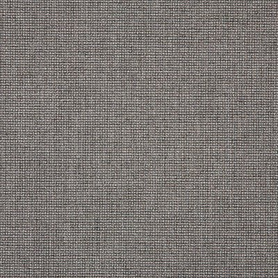 Sunbrella Bliss Smoke 48135-0003 Fabric