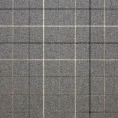 Sunbrella Paradigm Stone 40484 Fabric