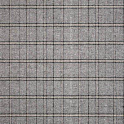Sunbrella Simplicity Ash 44340-0001 Fabric