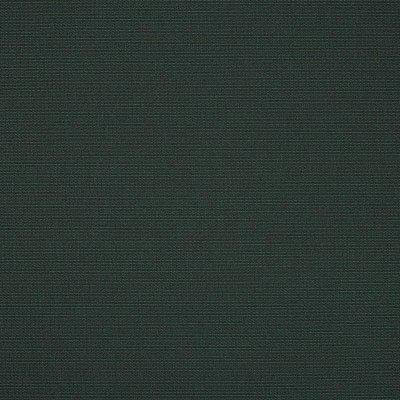 Sunbrella Ivy 4632 Fabric