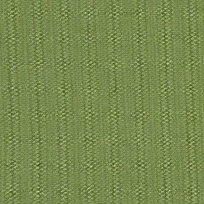Sunbrella Spectrum Cilantro 48022 Fabric