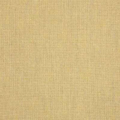 Sunbrella Spectrum Almond 48082 Fabric