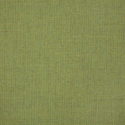 Sunbrella Cast Moss 48109 Fabric