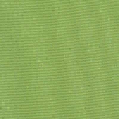 Sunbrella Canvas Ginkgo 54011 Fabric