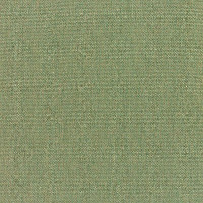 Sunbrella Canvas Fern 5487 Fabric