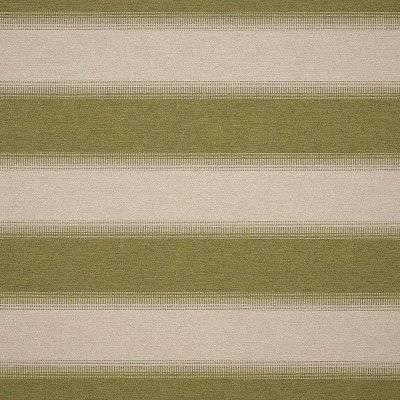 Sunbrella Intent Moss 16003-0001 Fabric