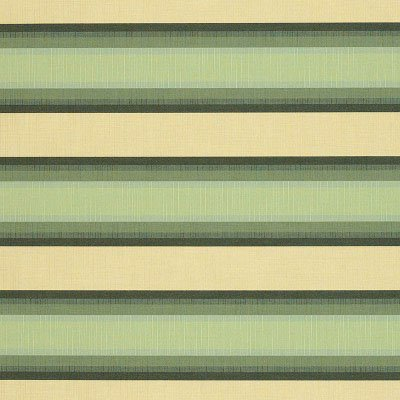 Sunbrella Colonnade Juniper 4856 Fabric