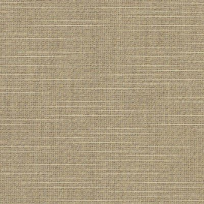 Sunbrella Silica Dune 4859 Fabric