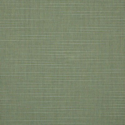 Sunbrella Silica Sage 4896 Fabric